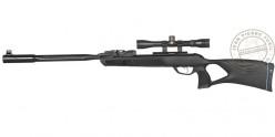 Carabine à plombs GAMO Roadster IGT 10X GEN2 4,5 mm (19,9 joules)
